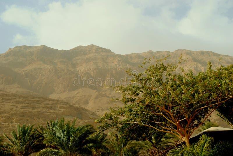 Qumran и свои окрестности стоковые фотографии rf