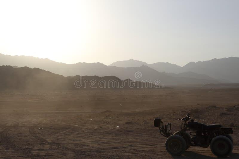 Quod en el desierto, Governorate del sur de Sinaí, Qesm Sharm Ash Sheikh, Egipt imágenes de archivo libres de regalías