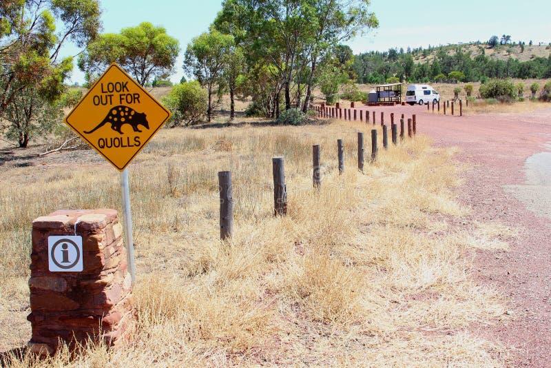 Quolls varningsvägmärke i Australien royaltyfri foto