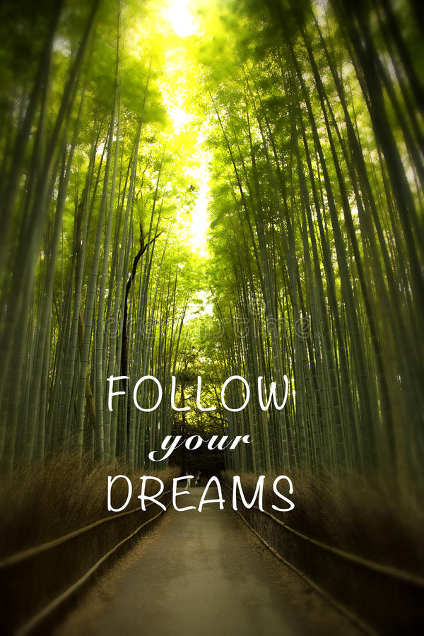 Quote with bamboo forest. Inspirational quote follow your dream on a picture of a bamboo forest in Japan royalty free stock images