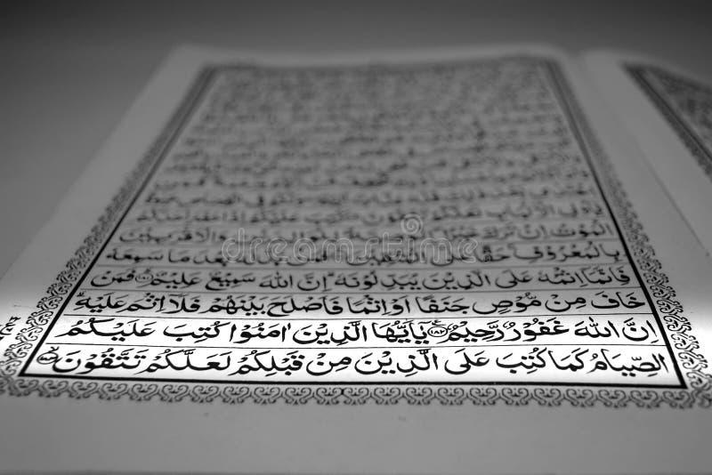 quran del acebo del foco en puesta del sol de la luz corta o musulmanes de la salida del sol con el ayuno ramadhan de los versos imágenes de archivo libres de regalías