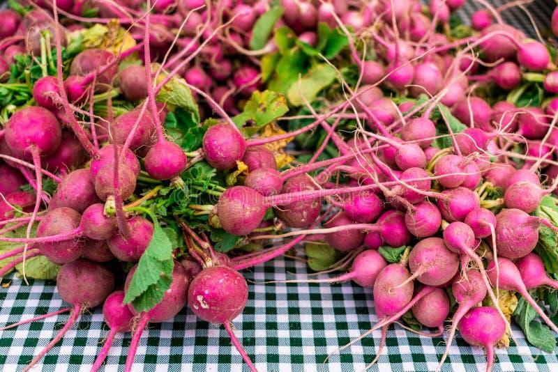 Rábanos rosados en un mercado de los granjeros foto de archivo