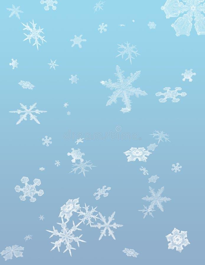 Ráfaga del invierno ilustración del vector