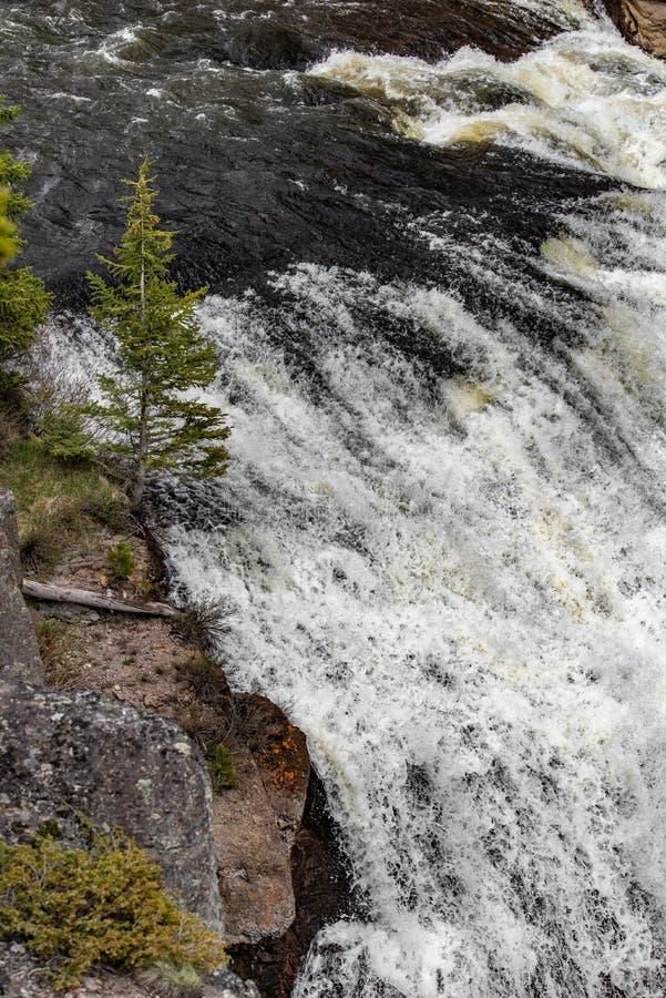 Rápidos de la cascada fotografía de archivo
