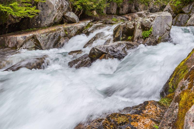 Rápidos en el río del paraíso, Mt rainier fotografía de archivo libre de regalías