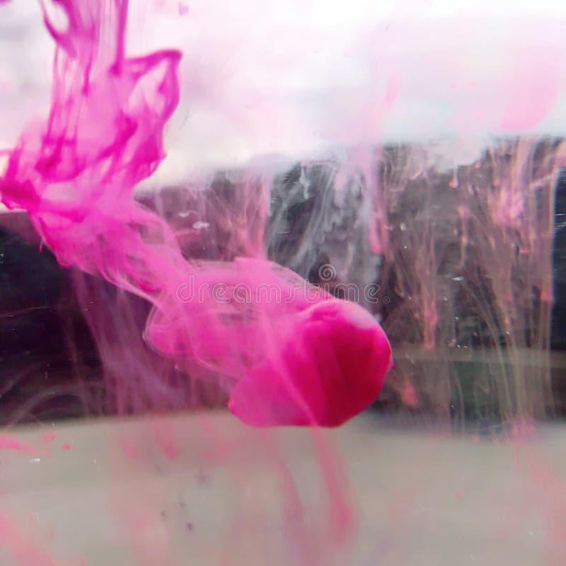 Różowe atrament krople w wodzie fotografia stock