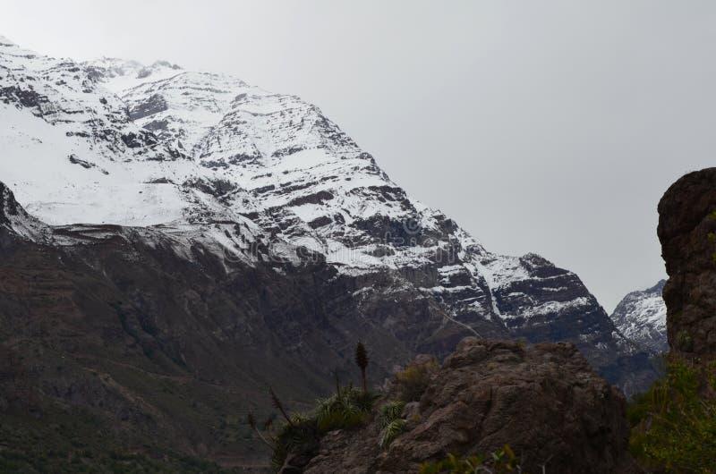 RÃo Blanco Krajowa rezerwa, środkowy Chile, wysoka różnorodności biologicznej dolina w Los Andes obraz stock