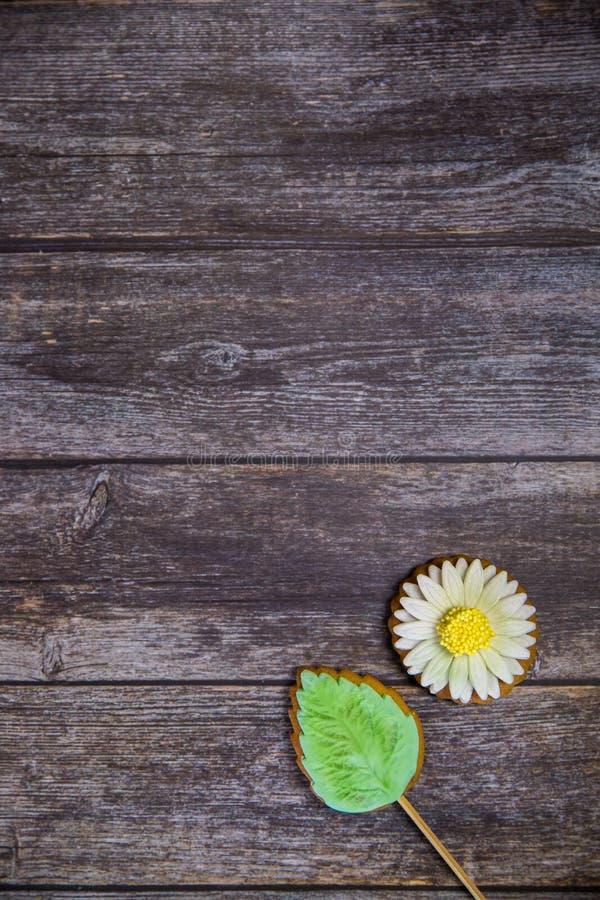 Ręka malujący piernikowy chamomile na drewnianym tle Odgórny widok Słodki deser jako prezent dla kobieta dnia na 8 Marzec zdjęcia royalty free