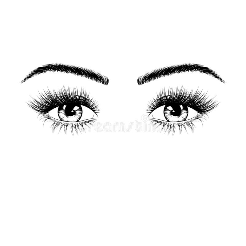 Ręka rysująca kobieta przygląda się sylwetkę Oczy z rzęsami i brwiami Wektorowa ilustracja odizolowywająca na biały tle royalty ilustracja