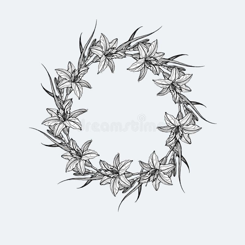 Ręka rysująca rama kwiaty lilly ilustracja wektor
