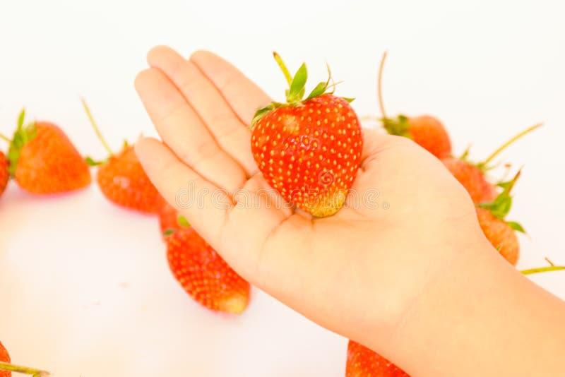 Räcka den hållande jordgubben arkivfoto