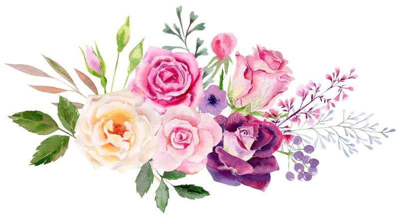 Räcka den målade mallen för vattenfärgmodellclipart av rosor vektor illustrationer