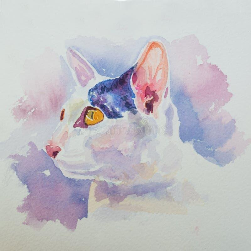 Räcka den målade vattenfärgen av ståenden av den förtjusande vita katten royaltyfri illustrationer