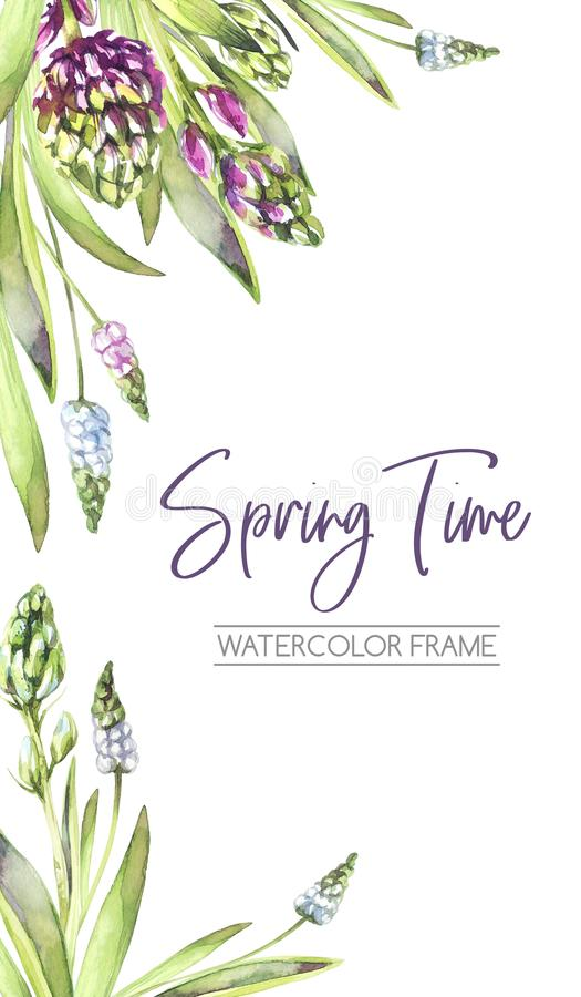 Räcka den målade vertikala ramen med hyacintblommor och sidor Vårvattenfärgillustration i violetta skuggor vektor illustrationer