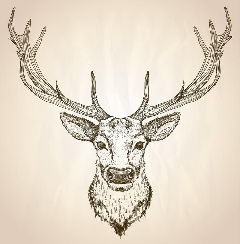 Räcka den utdragna grafiska illustrationen av av ett hjorthuvud med stora horn på kronhjort stock illustrationer