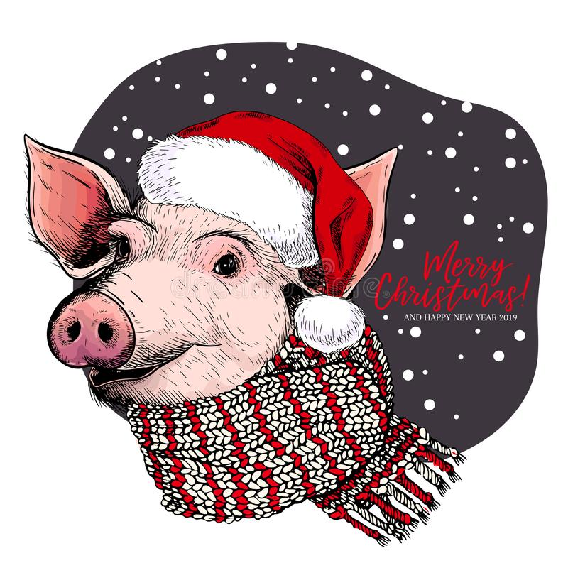 Räcka den utdragna ståenden av svinet som bär den santa hatten och halsduken Fyrkantig bakgrund med stället för ditt innehåll Kul vektor illustrationer