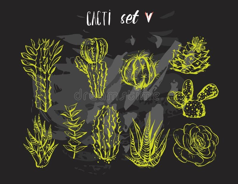 Räcka det utdragna vektordiagrammet den idérika suckulenten, kaktus och planterar samlingsuppsättningen som isoleras på svart bak vektor illustrationer