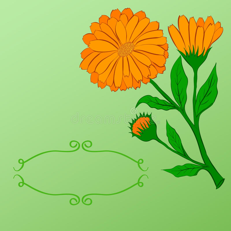 Download Räcka-dra blom- bakgrund vektor illustrationer. Illustration av romantiker - 76701306