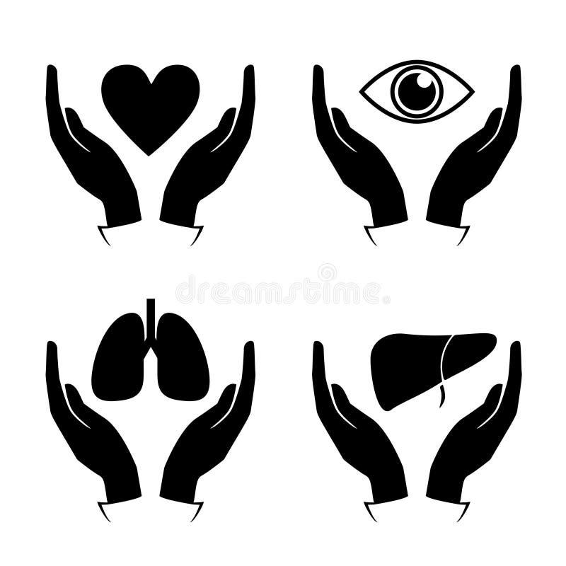 Räcka hållhjärta, ögat, lungan, leversymboler stock illustrationer