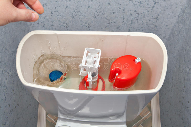 Räcka ner ett rengöringsmedel i bunke för toalett för slät behållare för vatten royaltyfri bild