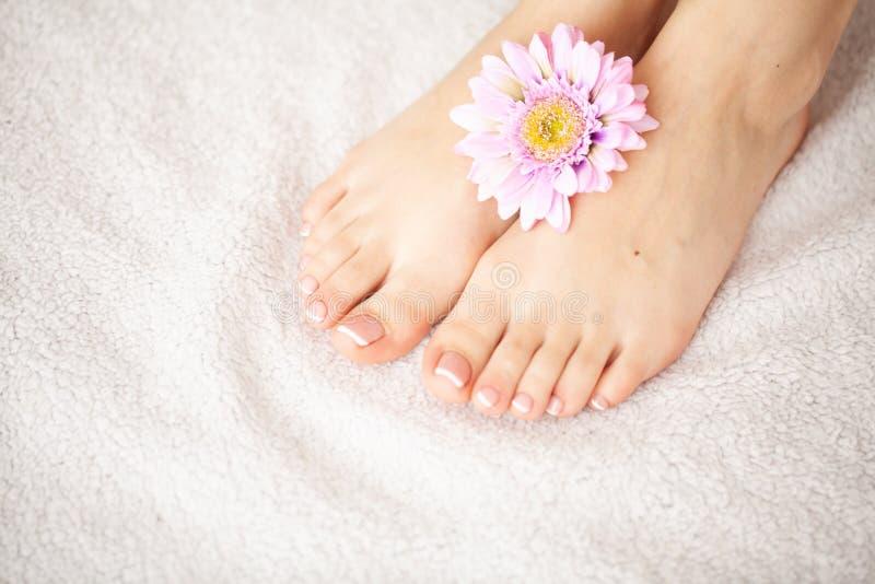 Räcka och spika omsorg Härlig fot och händer för kvinna` s efter manikyr och pedikyr på skönhetsalongen Spa manikyr royaltyfri bild
