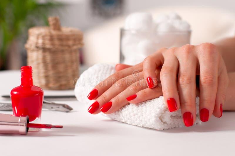Räcka omsorg Härlig manikyr, händer för kvinna` s med rött spikar arkivbild