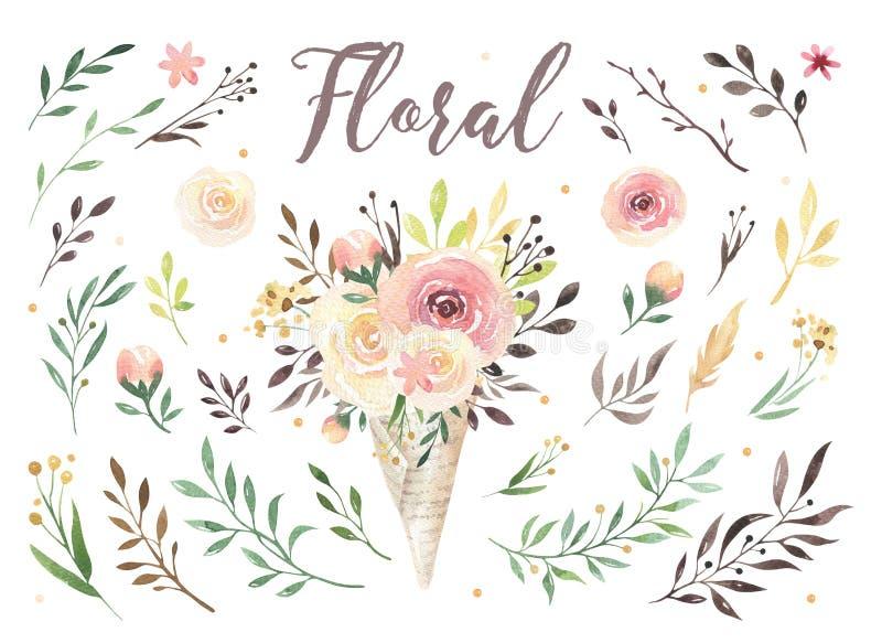 Räcka teckningen isolerade bohovattenfärgen den blom- illustrationen med sidor, filialer, blommor Bohemisk grönskakonst in vektor illustrationer