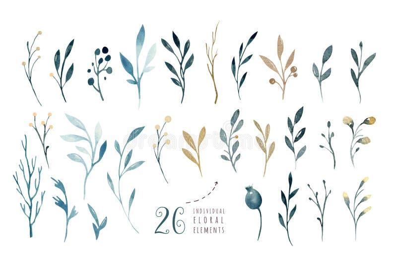 Räcka teckningen isolerade vattenfärgen den blom- illustrationen med sidor, filialer och blommor indigoblå akvarellkonst royaltyfri illustrationer