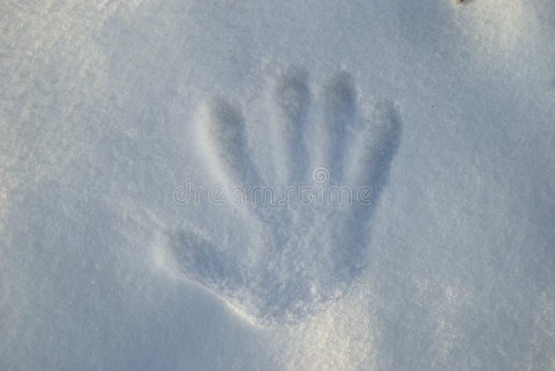 Räcka trycket i Snow arkivbild