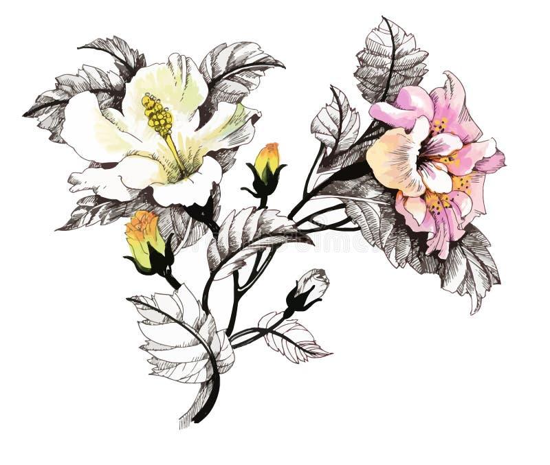Räcka utdragen målning med färgrika blommor på vit bakgrund vektor illustrationer