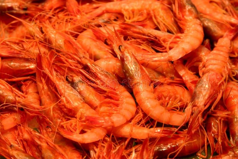 Download Räka arkivfoto. Bild av skaldjur, livsmedel, cooked, svanar - 289074