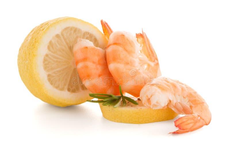 Räka med limefrukt royaltyfri foto