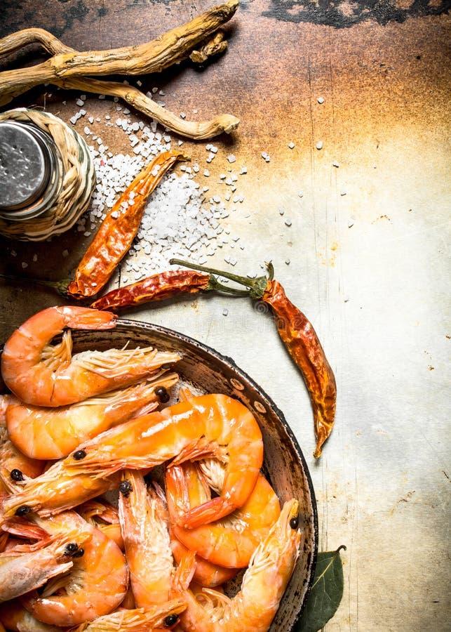 Räka med salt och kryddor royaltyfria foton