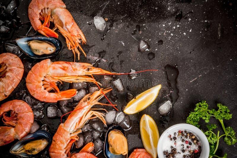 Räka och musslor på is arkivfoto