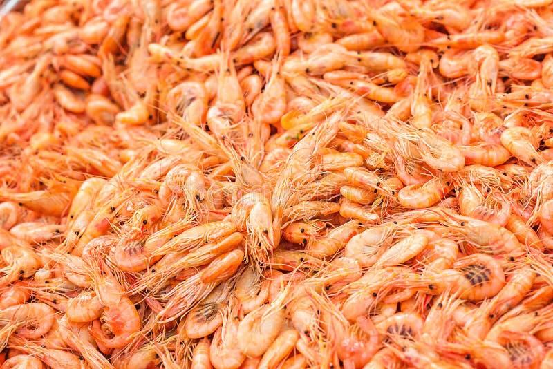 Räkabakgrundstextur Mycket havsräka eller modell av krill Havsmat gillar räka eller krill på gatamatfestivalen ST royaltyfria foton