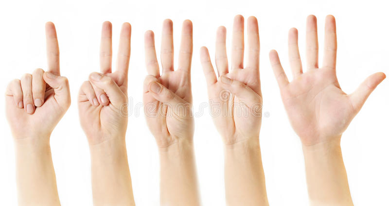 Räkna från en till fem med fingrar fotografering för bildbyråer