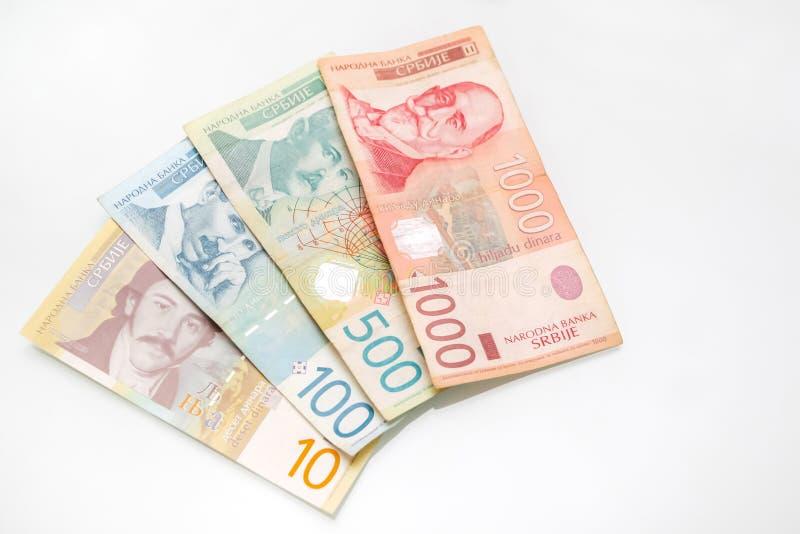 Räkningar av serbiska dinar fotografering för bildbyråer