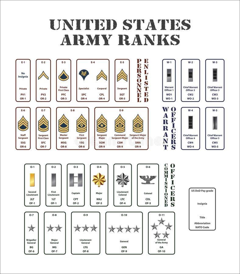 Ränge der AMERIKANISCHEN Armee lizenzfreie abbildung