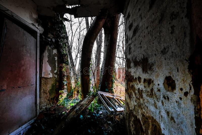 Räume mit einer Ansicht lizenzfreies stockfoto