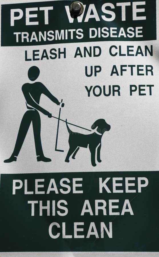 Räumen Sie nach Ihrem Haustier auf lizenzfreie stockfotografie