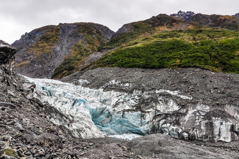 Rävglaciär i nyazeeländskt royaltyfri bild