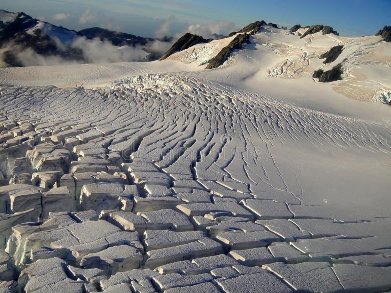 rävglaciär New Zealand arkivfoto