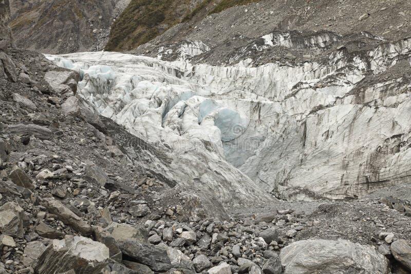 rävglaciär New Zealand fotografering för bildbyråer