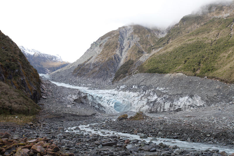 Rävglaciär New Zealand royaltyfria foton