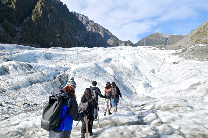 Rävglaciär som trekking, Nya Zeeland royaltyfria foton