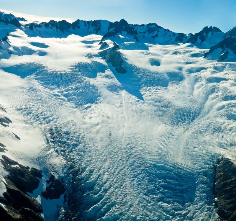 rävglaciärnivå nya övrezealand arkivfoton