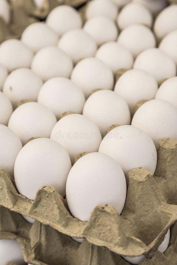 Rå ägg i låda visar till salu i en matmarknad fotografering för bildbyråer