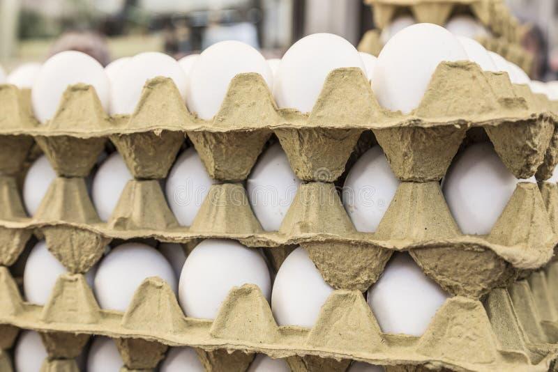 Rå ägg i låda visar till salu i en matmarknad royaltyfri bild