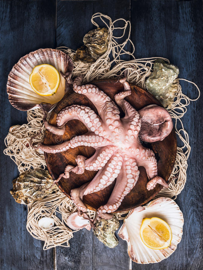 Rå bläckfisk i bunke på fisknät med havsskalet och citronen, blå trätabell royaltyfri foto
