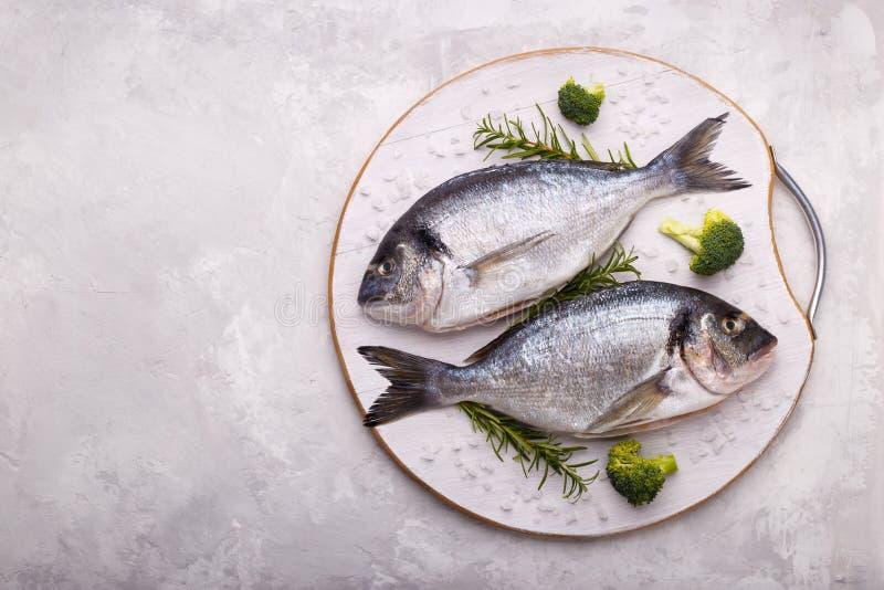 Rå fisk för havsbraxen royaltyfri fotografi